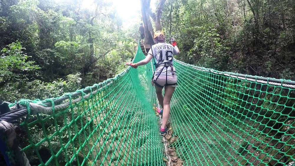 Antigua Rainforest Canopy Summer Special