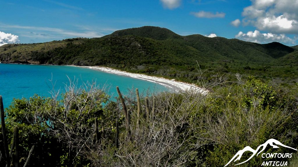 Contours Antigua #WCLL Summer Offer