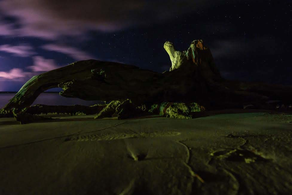 Mark Blan Photography beach driftwood at night