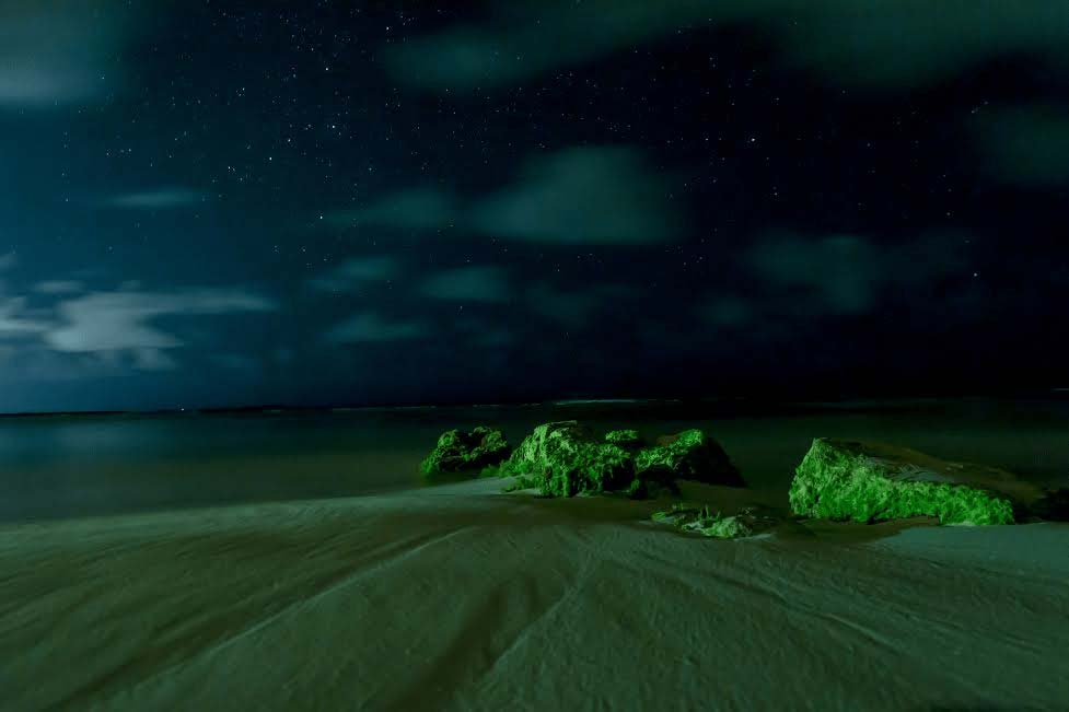Mark Blan Photography green sea at night