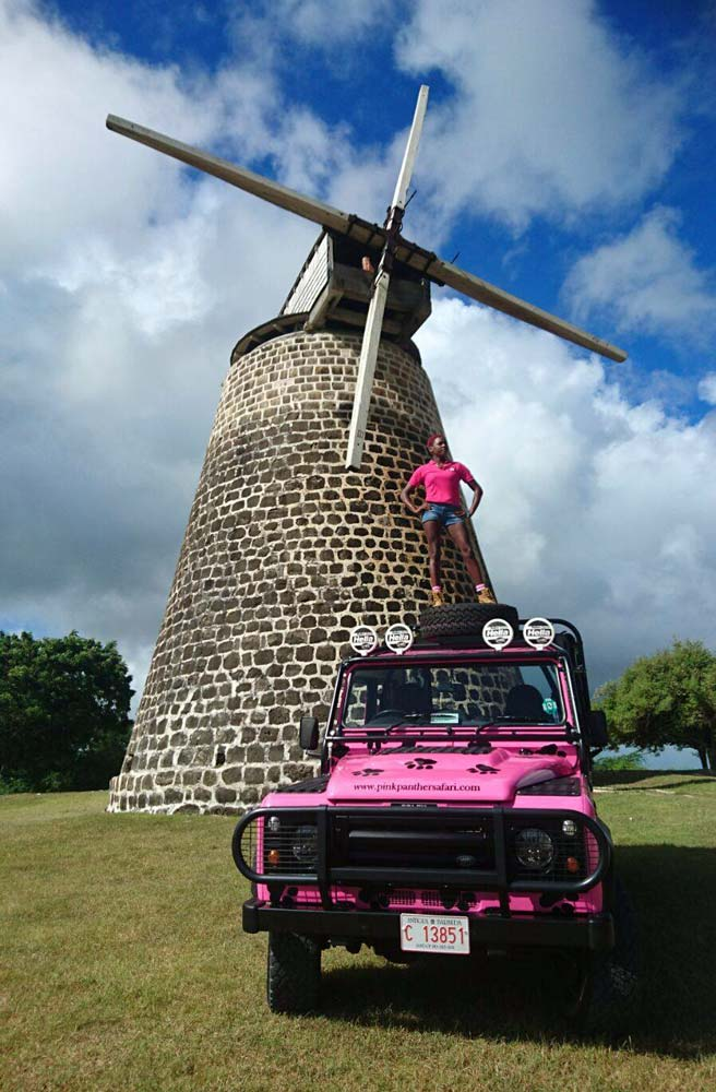 Pink Panther Safari sugar mill