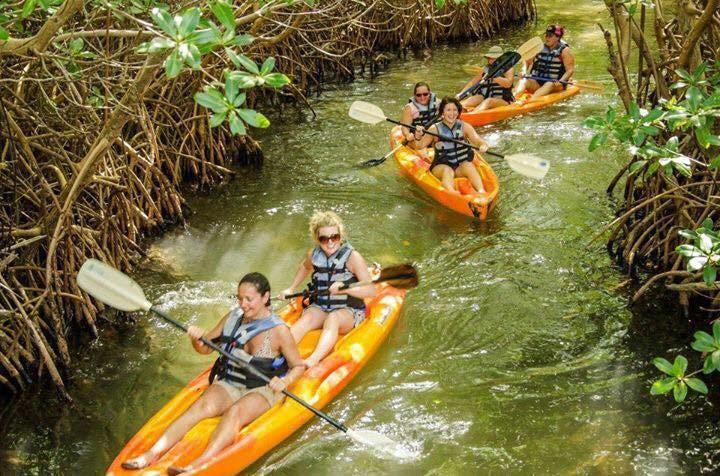 South Coast Horizons rafting tour