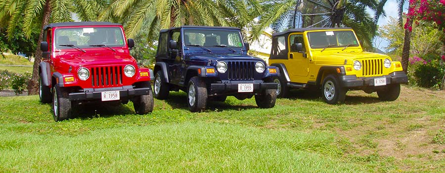 Tropical Rentals three jeeps