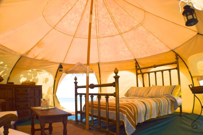 Wild Lotus Camp  #WCLL Summer Offer